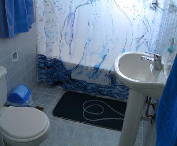 The bath room 2